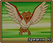 Spearow10.png